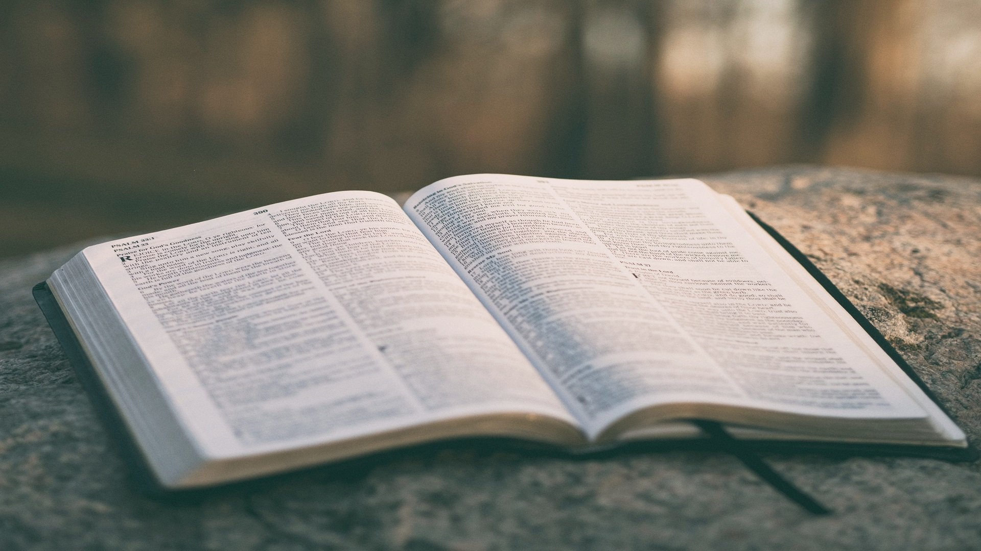 bible 2-edited